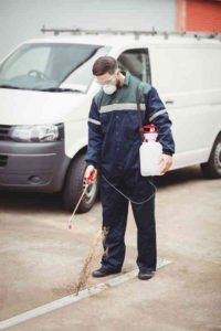 Pest Extermination